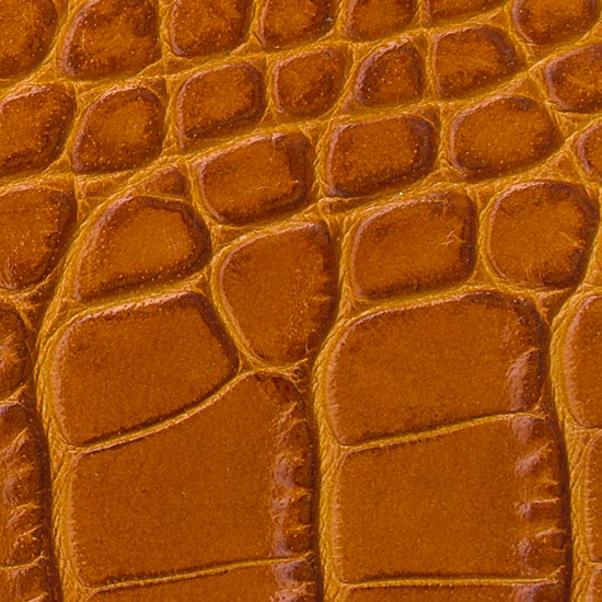 crocodile tan